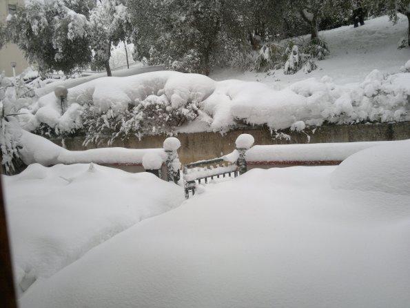 nevone febbraio 2012